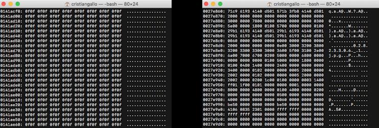 recupero-dati-da-partizioni-ntfs-e-fat32-con-photorec